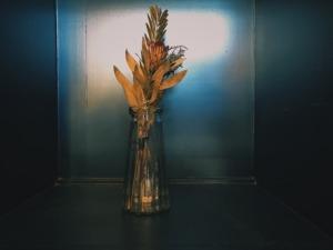 dry -flower20210110