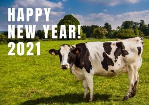 群馬県高崎市の家具屋の新年の挨拶